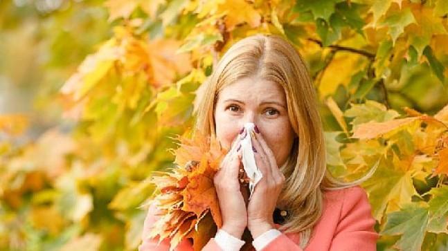 Yorgunluğunuzun nedeni alerji olabilir!